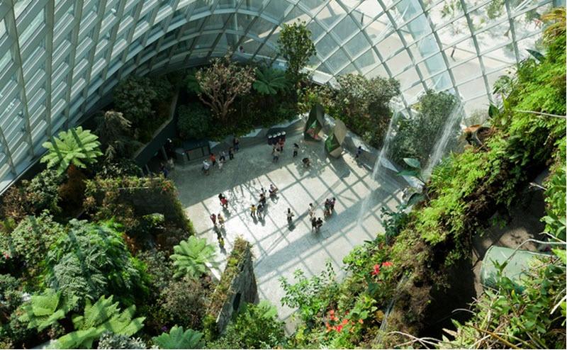 mai-vom-vo-oc-doc-dao-cua-khu-vuon-nhan-tao-gardens-by-the-bay-3