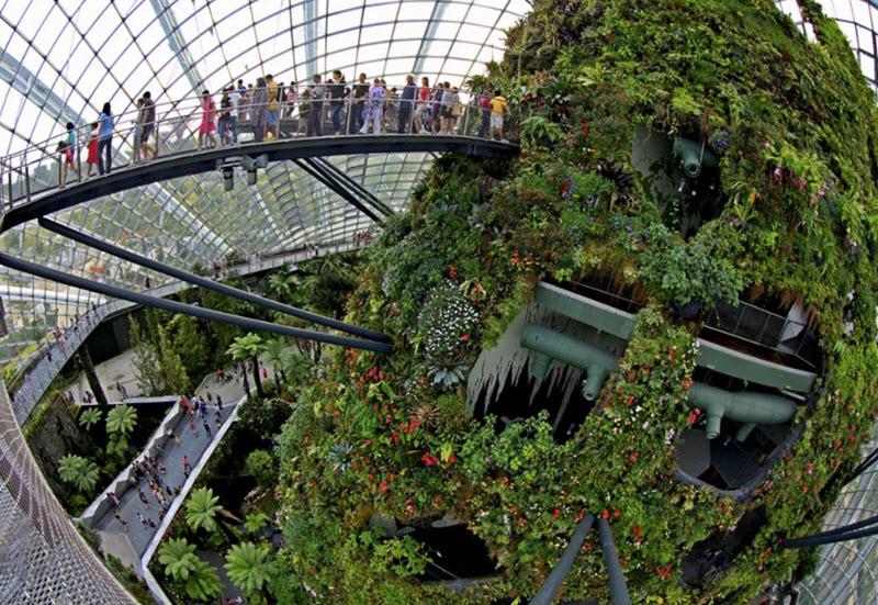 mai-vom-vo-oc-doc-dao-cua-khu-vuon-nhan-tao-gardens-by-the-bay-4