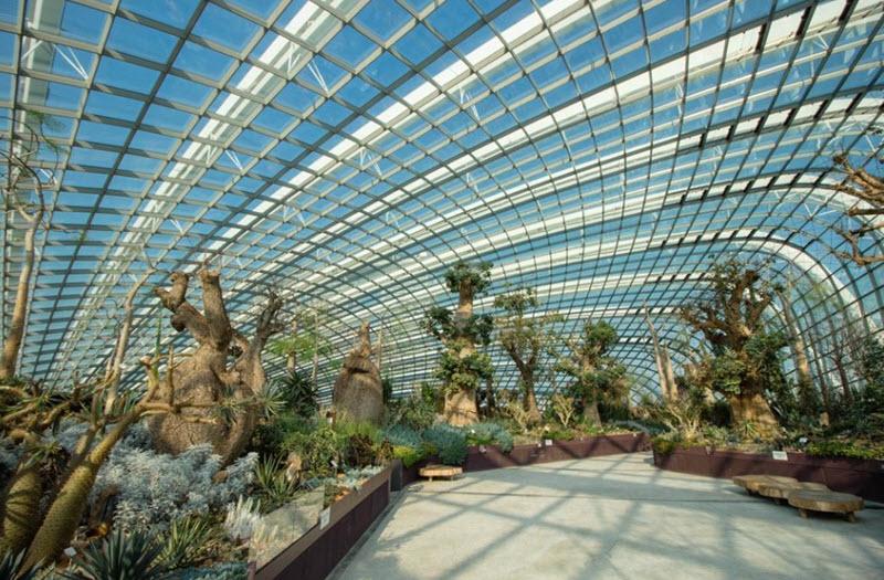 mai-vom-vo-oc-doc-dao-cua-khu-vuon-nhan-tao-gardens-by-the-bay-5