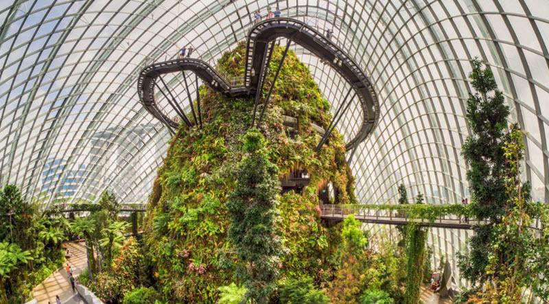 mai-vom-vo-oc-doc-dao-cua-khu-vuon-nhan-tao-gardens-by-the-bay-6