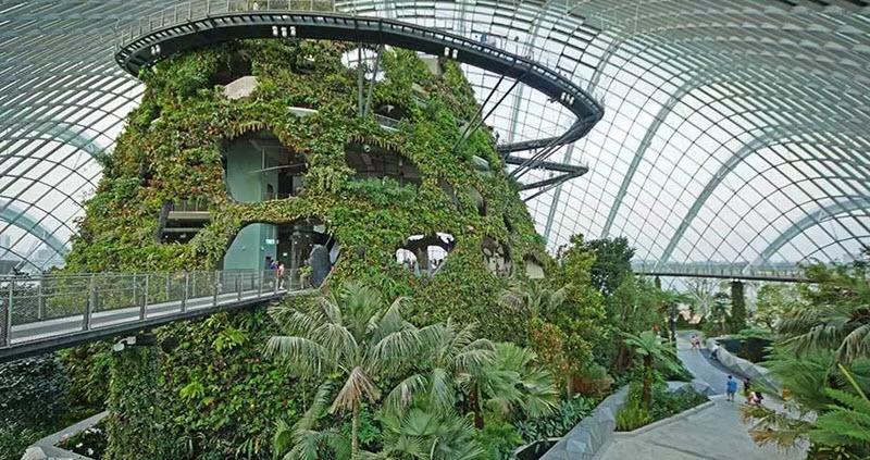 mai-vom-vo-oc-doc-dao-cua-khu-vuon-nhan-tao-gardens-by-the-bay-7