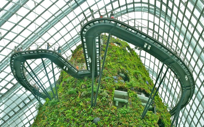 mai-vom-vo-oc-doc-dao-cua-khu-vuon-nhan-tao-gardens-by-the-bay-8