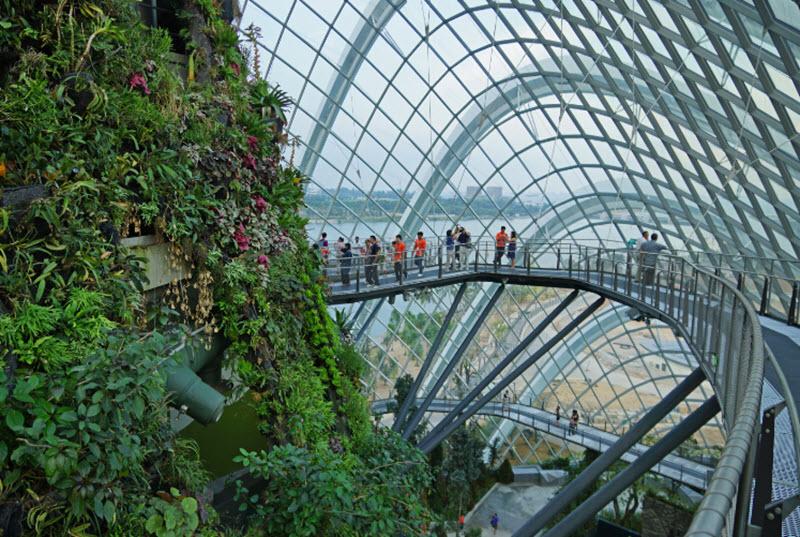 mai-vom-vo-oc-doc-dao-cua-khu-vuon-nhan-tao-gardens-by-the-bay